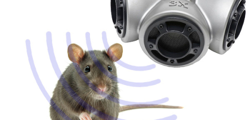The use of ultrasound against rats and mice