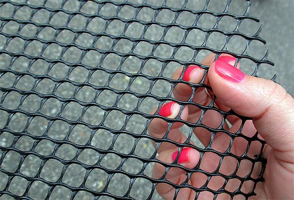 A nyaralónak a vakondoktól való védelme érdekében célszerű speciális tartós hálót használni.