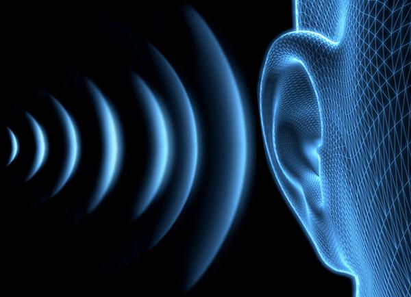 Det mänskliga örat är praktiskt taget oförmöget att höra ultraljud (frekvens över 20 000 Hz).