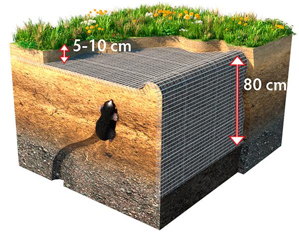 Bilden visar hur man använder rutnätet från mol för att få det mest effektiva skyddet av sommarstugan.