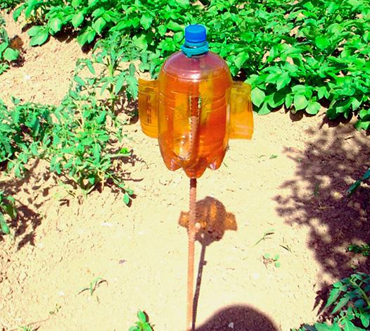 Az anyajegyek eltávolítására szolgáló fonókészüléket is lehet készíteni egy közönséges műanyag palackból.