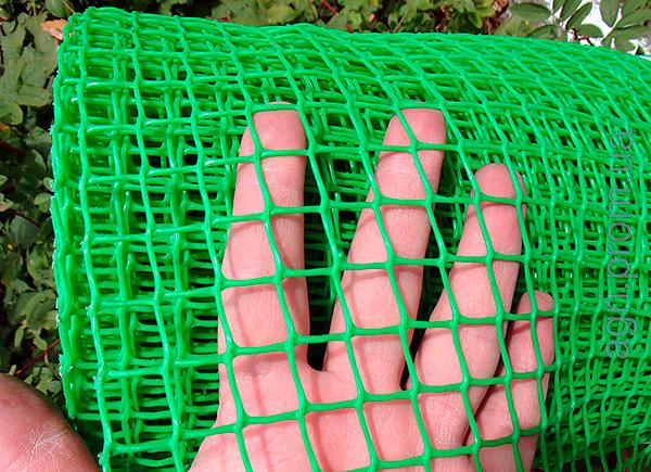 A területet körülhatárolva a vakondoktól a talajba ásott kicsi műanyag hálóval legalább 80 cm mélységig lekeríthető.