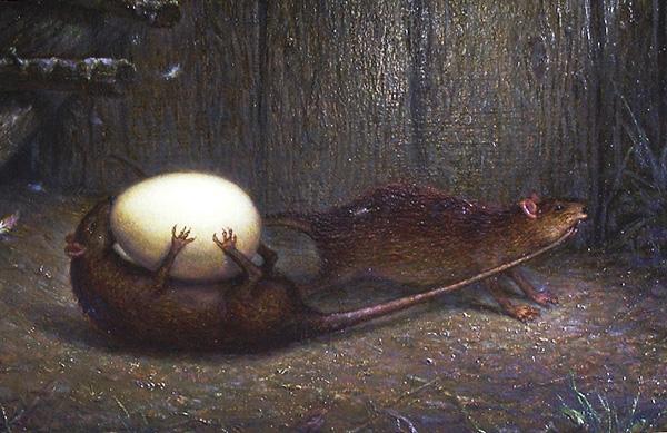 Il y a des légendes parmi la population selon lesquelles c'est ainsi que des rats tirent des œufs du poulailler.