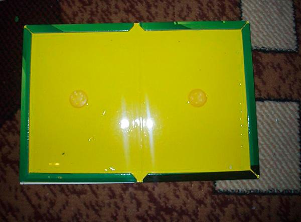 La photo montre un exemple de piège adhésif pour rats et souris sous forme expansée.
