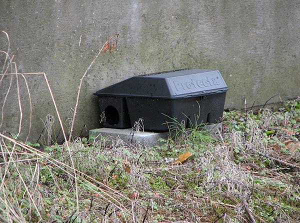 La photo montre un conteneur de protection qui vous permet d'exclure l'accès au poison de toute autre personne à l'exception des rats et des souris.