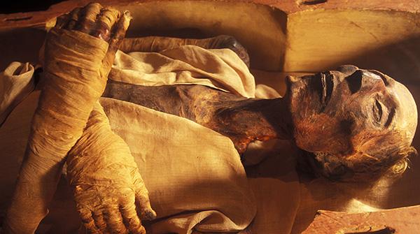 La photographie montre la momie (le corps humain a été embaumé pour empêcher la décomposition).