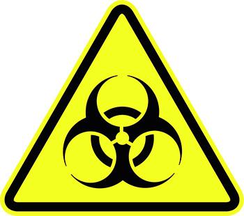 A patkányharapás súlyos fertőző betegségekkel fertőzhető meg ...