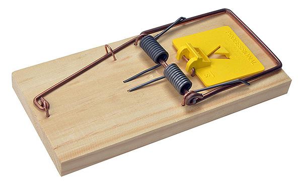 Piège à rats en bois classique.