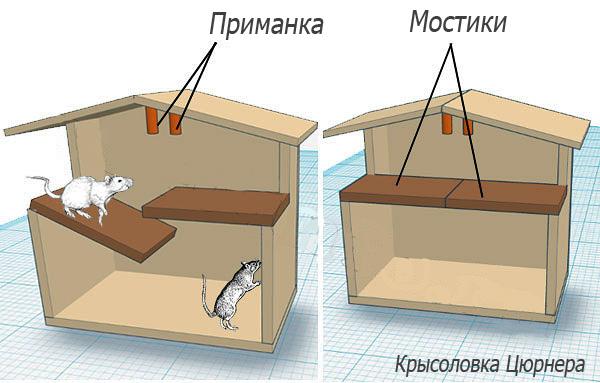 Voici à quoi ressemble le piège à rats de Zürner.