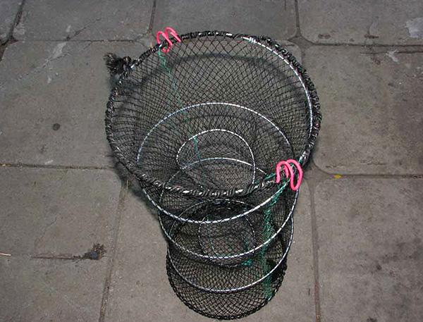 Le piège à rats peut être fabriqué indépendamment d'un plateau de pêche.