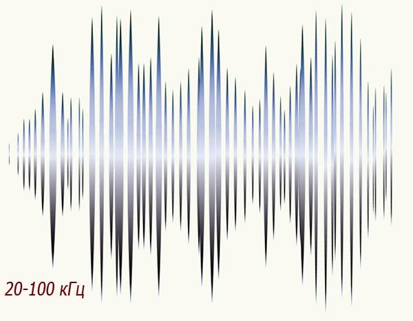 Ang saklaw ng dalas ng dalas mula 20 kHz hanggang 100 kHz ay sapat na para sa epektibong pagkakalantad sa mga daga at mga daga.